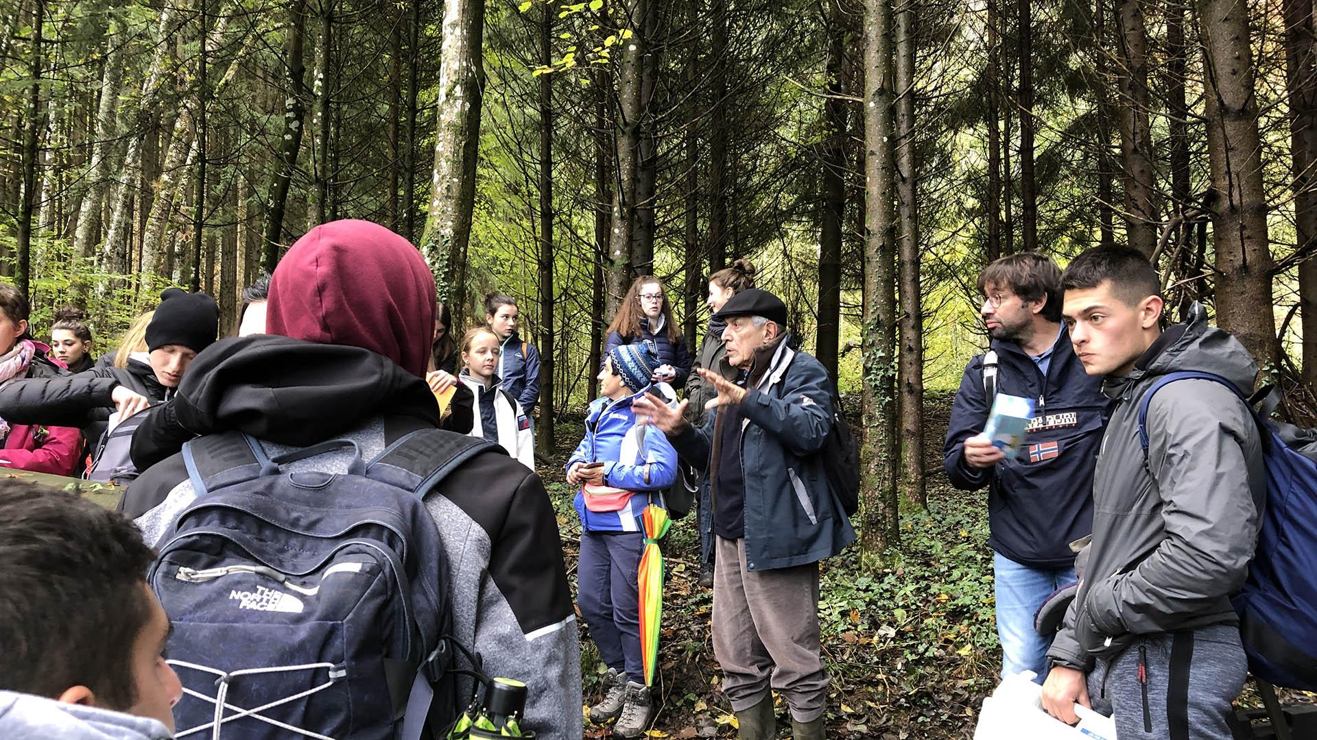 Etudiants en forêt dans le géoparc du chablais