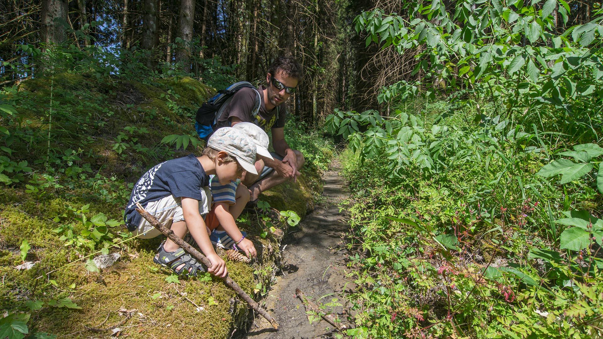 2 enfants et un accompagnateur au bord du brevon dans la foret ivre