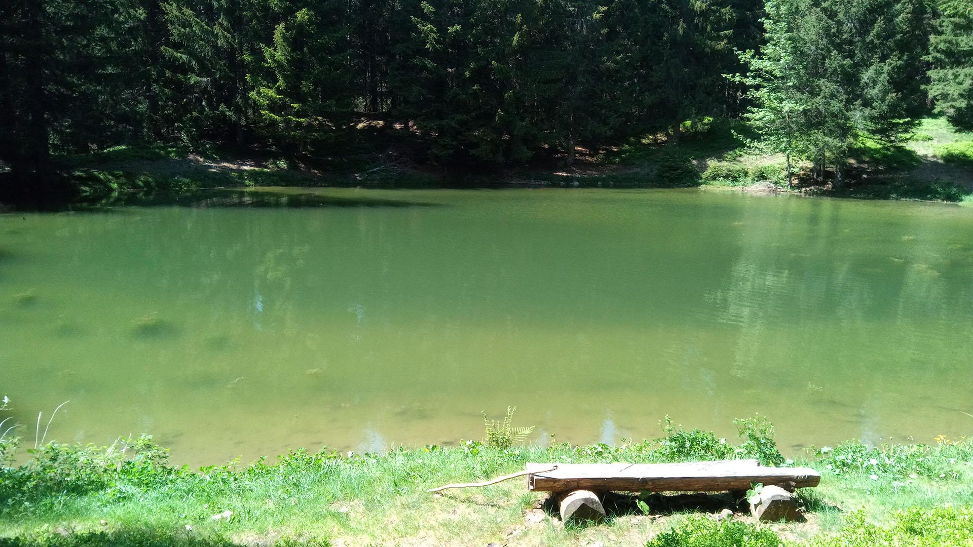 Vue d'un joli lac vert de montagne